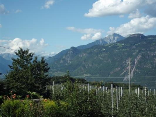 Paradies Südtirol 4