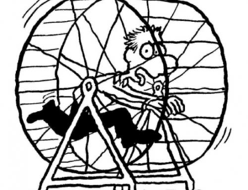 Was ist der Unterschied zwischen einem Hamsterrad und einer Waschmaschine?